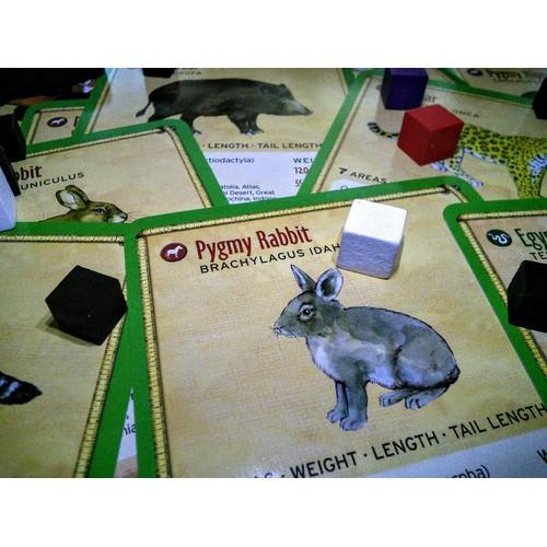 Juego de Mesa Fauna