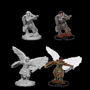 D&D Miniatura Aasimar Fighter Male